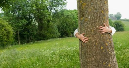 a-woman-hugging-a-tree-548x290