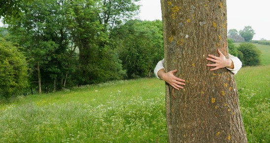 a-woman-hugging-a-tree-548x290