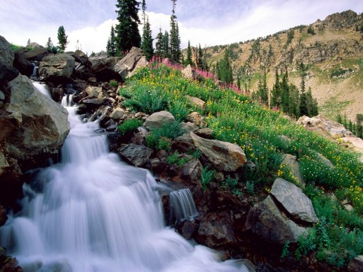rushing_waters_of_spring__grand_teton__wyoming